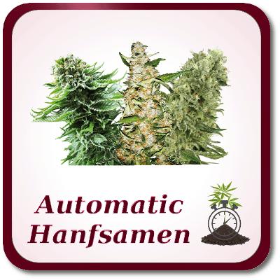 automatic-hanfsamen
