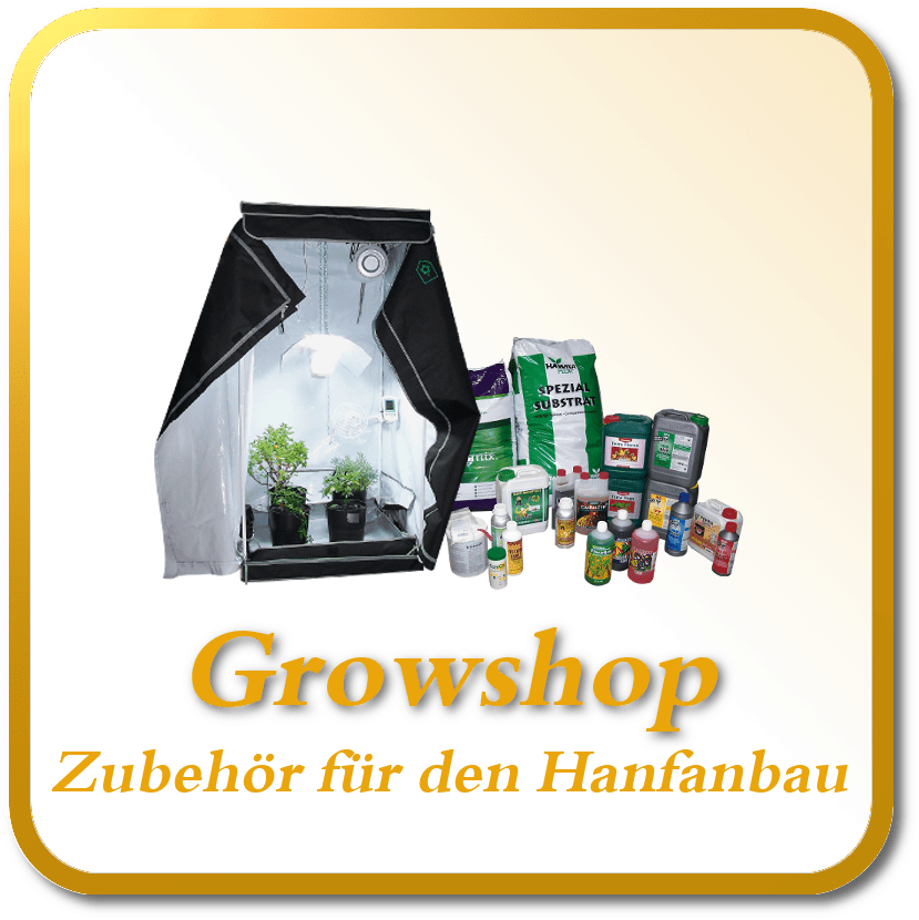 Cannabis Samen kaufen Growshop