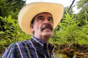 Marihuana Mexiko