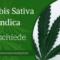Cannabis Indica & Cannabis Sativa Pflanzen Unterschiede