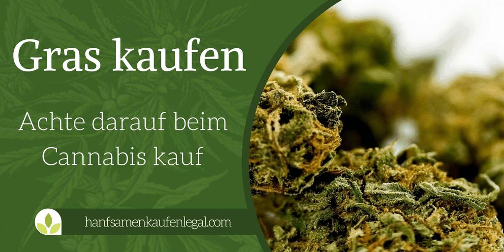 weed kaufen