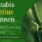 Cannabis Vorblüte erkennen – Geschlechtsbestimmung Hanf