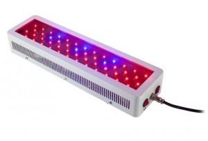 100W LED Panel, gemischtes Spektrum