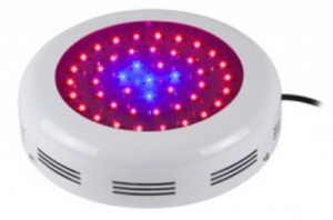90W LED UFO, blaues Spektrum